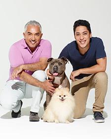 Cesar Millan ile Köpekler Diyarı