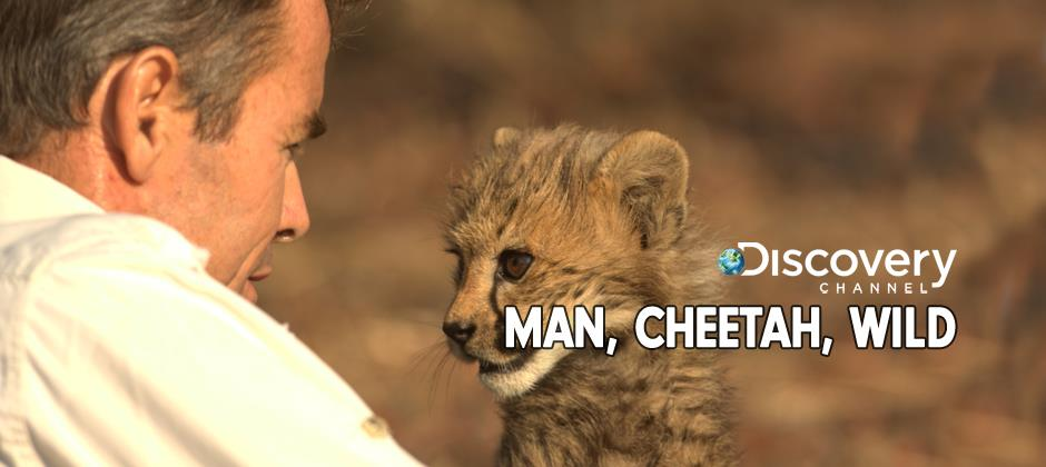 Man, Cheetah, Wild