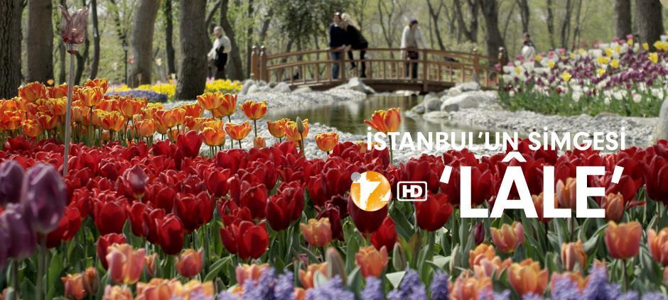 İstanbul'un Simgesi Lale