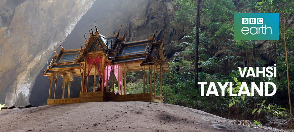 Vahşi Tayland