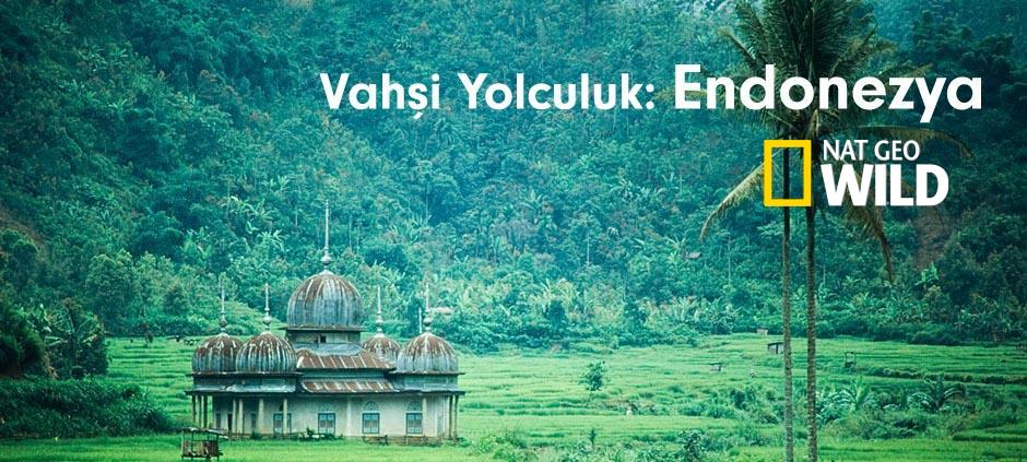 Vahşi Yolculuk: Endonezya