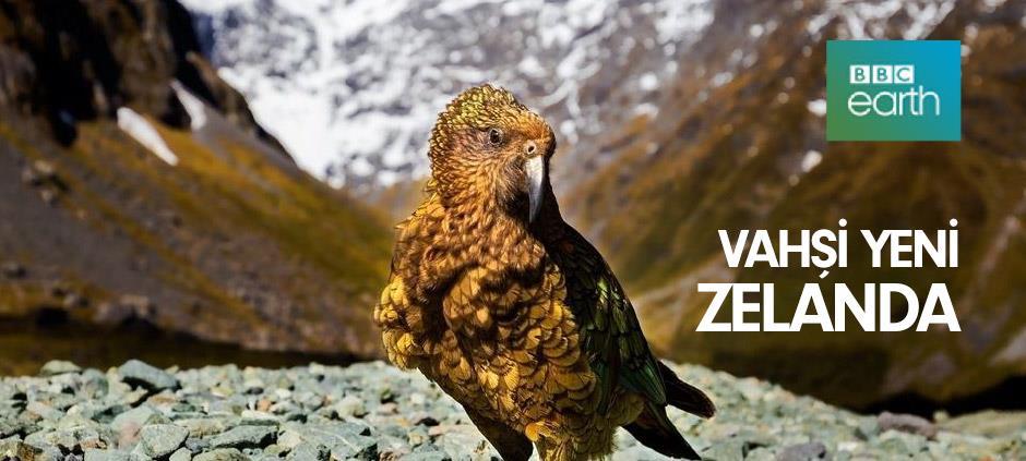 Vahşi Yeni Zelanda