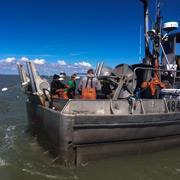 Alaska: Körfez Savaşı